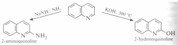 nucleofile
