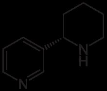 anabasina