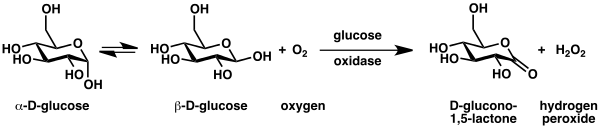 ossidasi