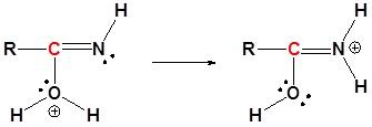 trasferimento protone