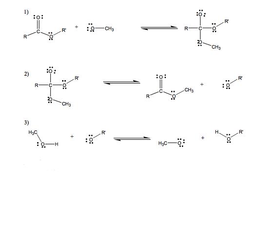 transesterificazione in ambiente basico