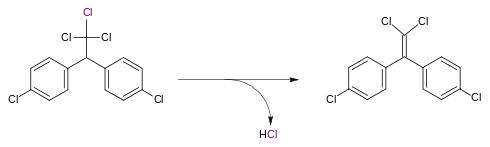 DDT-deidroclorinasi