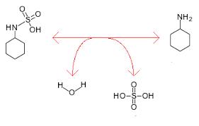 ciclammato solfoidrolasi