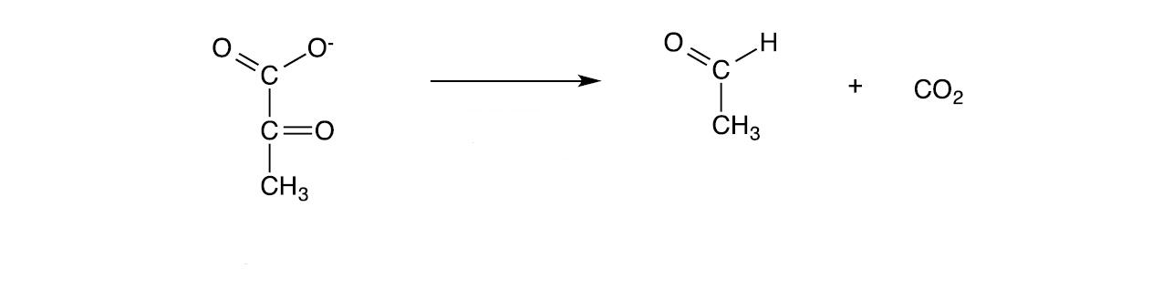 piruvato decarbossilasi